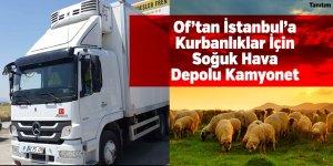 Kurbanlıklarınız Of'tan İstanbul'a Taşınıyor