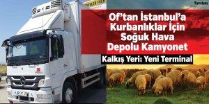 Of'tan İstanbul'a Kurbanlıklar İçin Soğuk Hava Depolu Kamyonet
