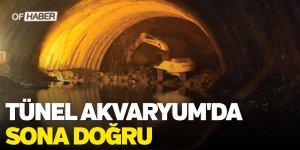 Tünel Akvaryum'da Sona Doğru